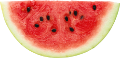 watermelon_png232