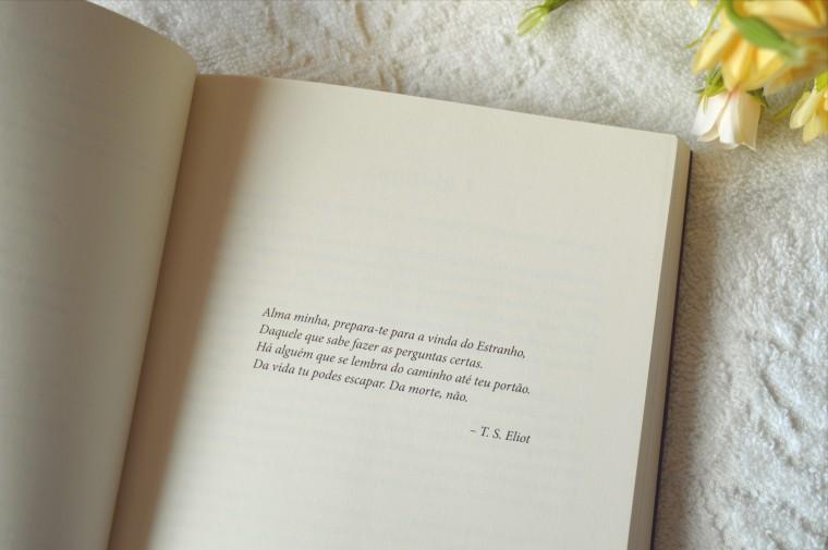 resenha-livro-harlan-coben-nao-fale-com-estranhos-1
