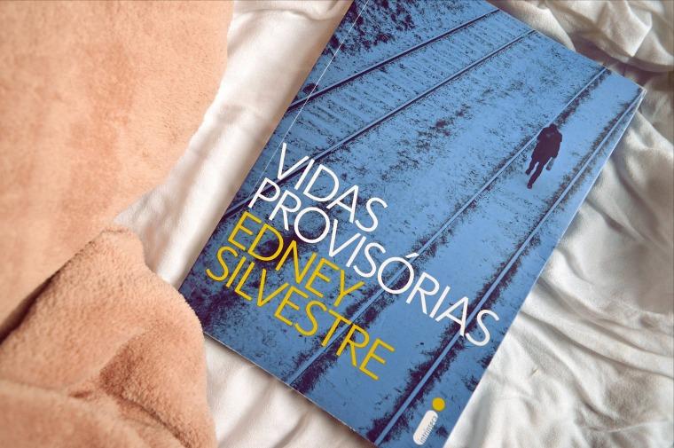 resenha livro vidas provisórias